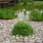 Из крупного природного камня можно вымостить неплохие уголки
