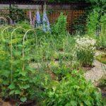 Маленький французский огород, и даже скульптура есть