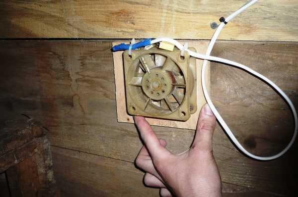 Вентилятор в ккурятнике