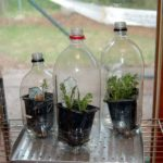 Использование пластиковых бутылок уже привычно, нестандартна только форма. Бутылка только надрезается и внутрь вставляется стакан с рассадой, а можно посадить прямо внутрь...