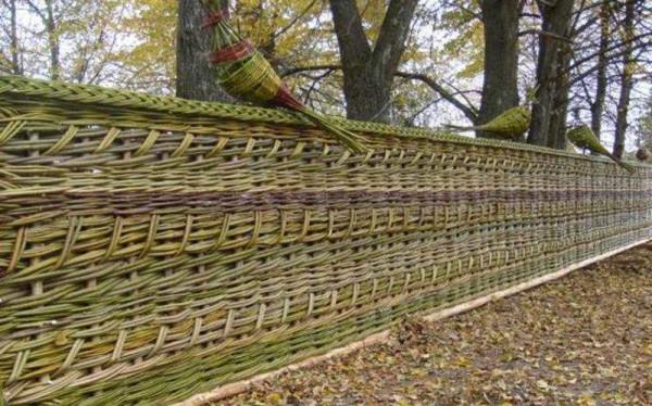 Плетень - один из самых дешевых заборов, особенно, если молодые побеги можно нарезать в соседнем лесу