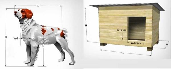 Определение размеров собачьей конуры