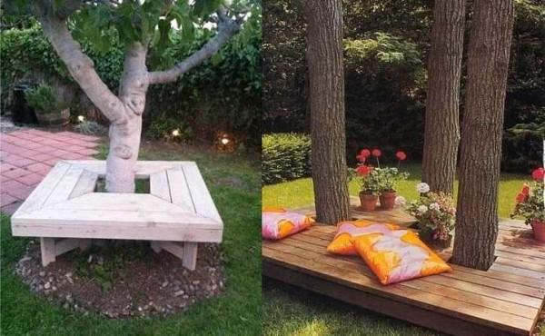 Место для отдыха под деревом