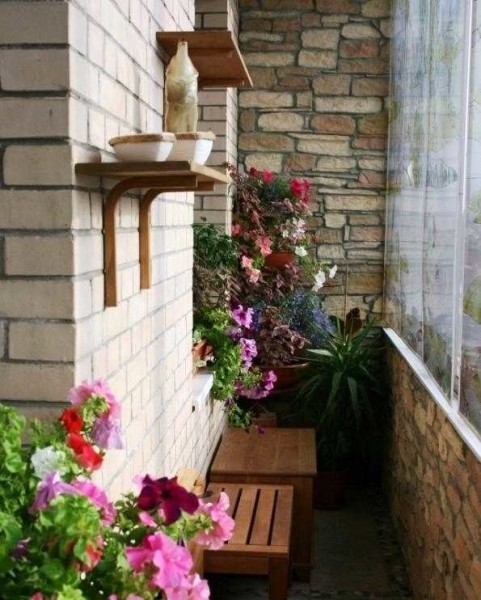 Цветы на балконе - отделка должна быть легко моющейся