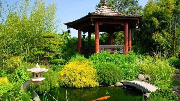 оформление водоема в саду
