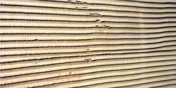 Стена подготовленная под штукатурку