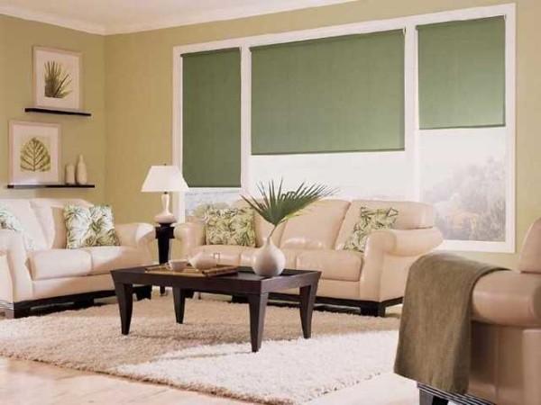 Рулонные шторы для гостиной - для динамичного интерьера