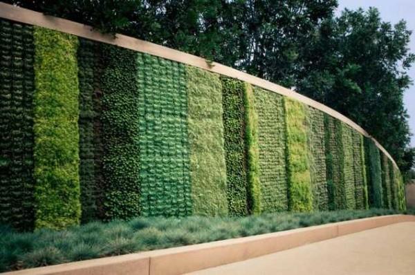 Настоящий зеленый забор, но не из кустарников, а из трав в горшочках