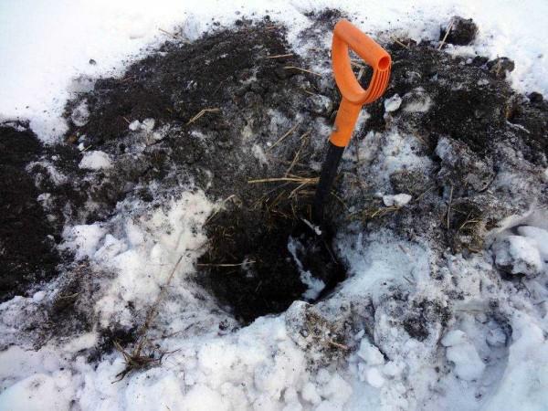 Зима и позднее лето - лучшее время для копки колодцев