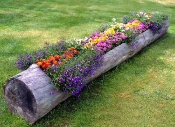 Вазоны для цветов из пней и стволов деревьев могут быть разного размера