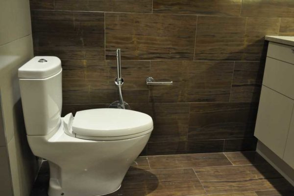 Гигиенический душ для унитаза - есть несколько вариантов