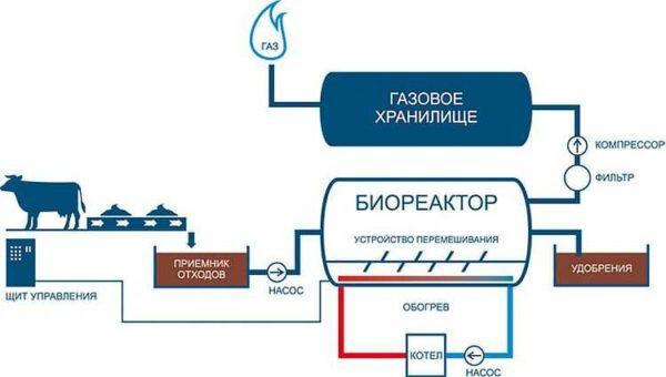 Принципиальная схема биогазовых установок