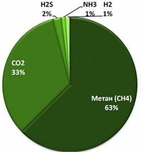 Примерный состав биогаза