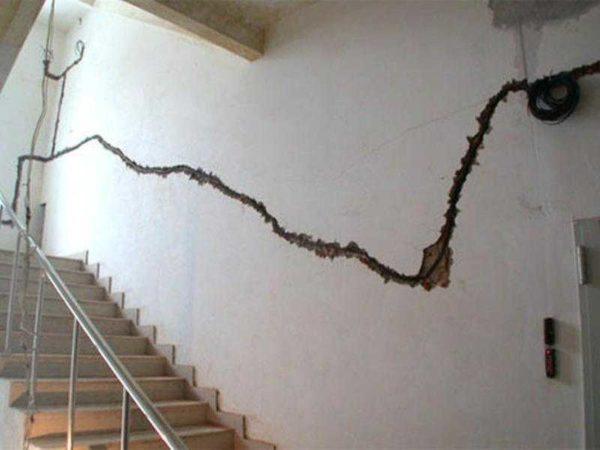 Далеко не всегда проводка находится там, где должна быть по логике вещей