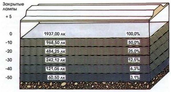 Каждые 10 см глубины {amp}quot;съедают{amp}quot; 50% от уровня освещенности