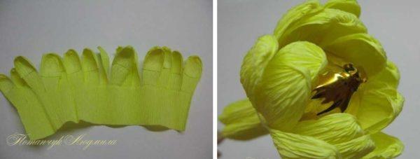 cveti-iz-gofrirovannoj-bumagi-25-600x227 Мастер-класс «Букет цветов из бумаги». Воспитателям детских садов, школьным учителям и педагогам