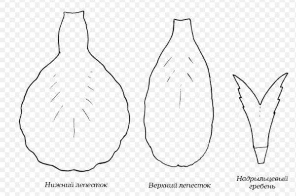 cveti-iz-gofrirovannoj-bumagi-42-1-600x397 Гофрированная бумага, применение, виды, изготовление
