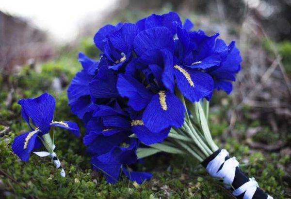 cveti-iz-gofrirovannoj-bumagi-42-600x412 Мастер-класс «Букет цветов из бумаги». Воспитателям детских садов, школьным учителям и педагогам