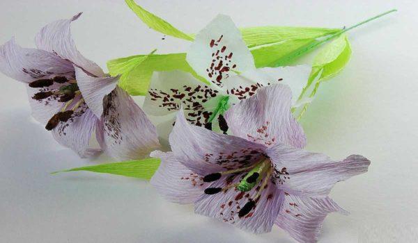 cveti-iz-gofrirovannoj-bumagi-43-600x350 Мастер-класс «Букет цветов из бумаги». Воспитателям детских садов, школьным учителям и педагогам