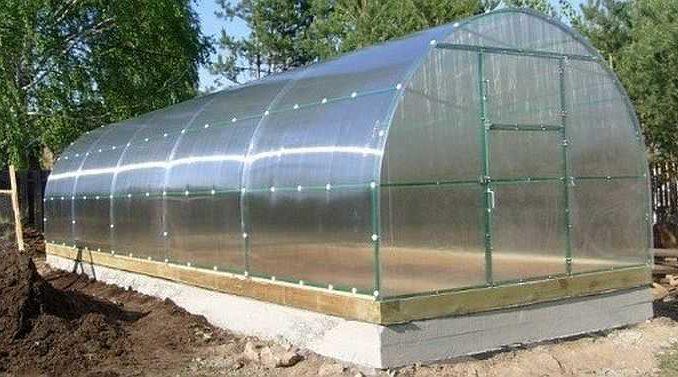 Для нормальной эксплуатации лучше поставить теплицу из поликарбоната на фундамент