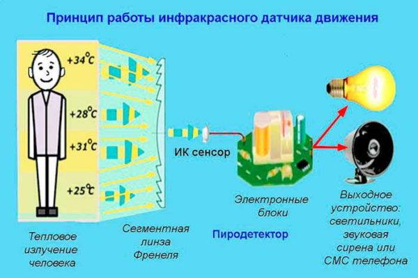 Работа инфракрасных датчиков движения основаны на отслеживании тепла, выделяемого человеком