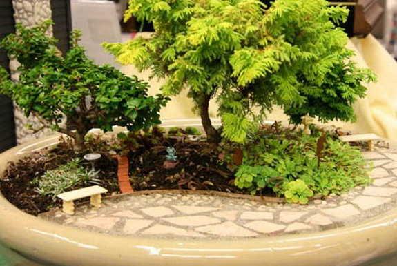 Открытый мини сад в квартире или доме