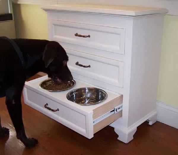 Где поставить миски для собаки
