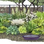 План размещения растений для палисадника с глухим забором
