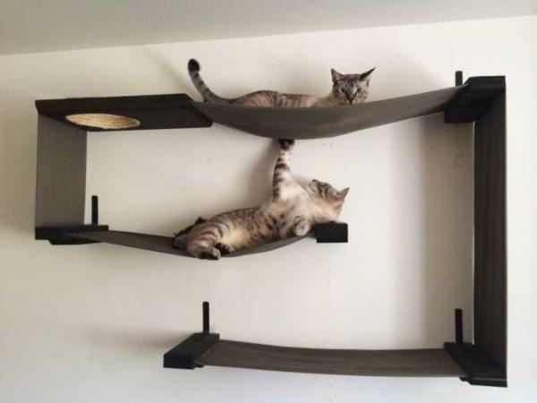 Комбинация полок для кошек с гамаками... Почти произведение искусства