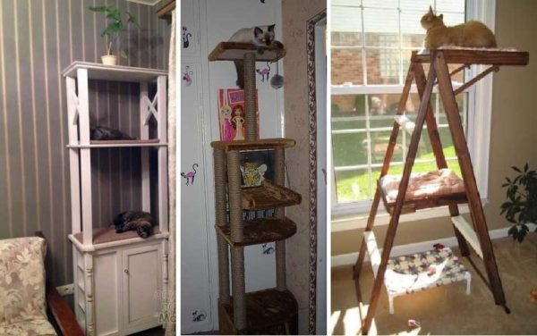 Сделать кошачью лежанку в виде этажерки — интересная идея. Так же как кошачью лазалку из стремянки