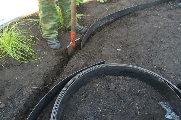Оформить и укрепить грядки можно при помощи пластиковой бордюрной ленты для сада и огорода
