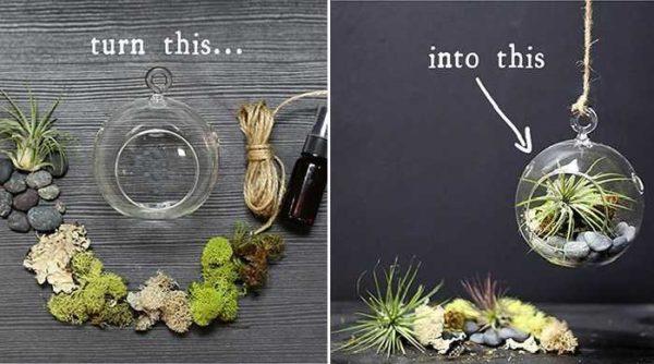"""Сама """"сборка"""" занимает несколько минут. Но перед тем как сделать флорариум много времени приходится подбирать растения, определять оптимальный сосав почвы"""