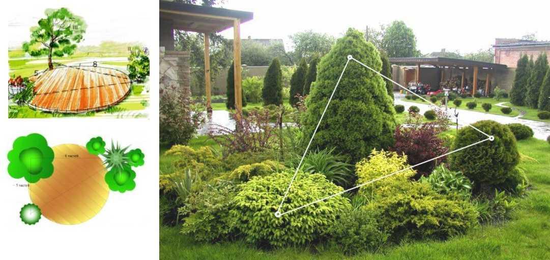 Золотое сечение: правило треугольника в садовом дизайне