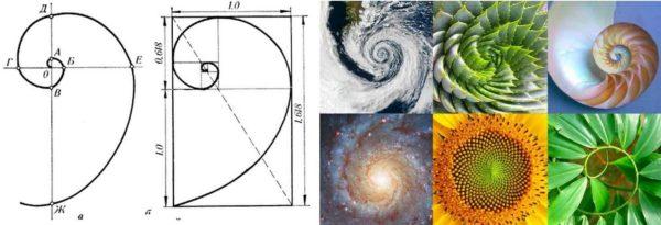 Последовательность Фибоначчи - не только математическая формула