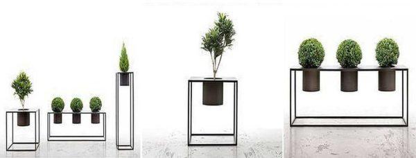 Для максимального эффекта надо правильно подобрать форму растения