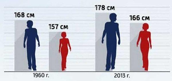 Статистика по среднему росту Россиян