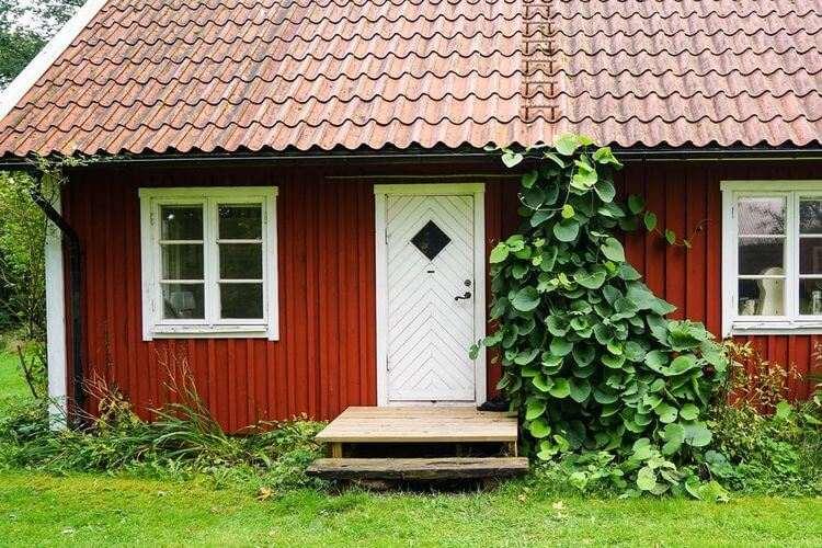 Вариант покраски дома с защитой древесины на основе железного купороса