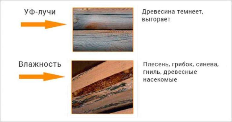 Повреждение древесины ультрафиолетом и влагой