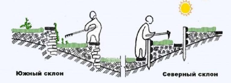 Расположение грядок и междурядий на участке со склоном