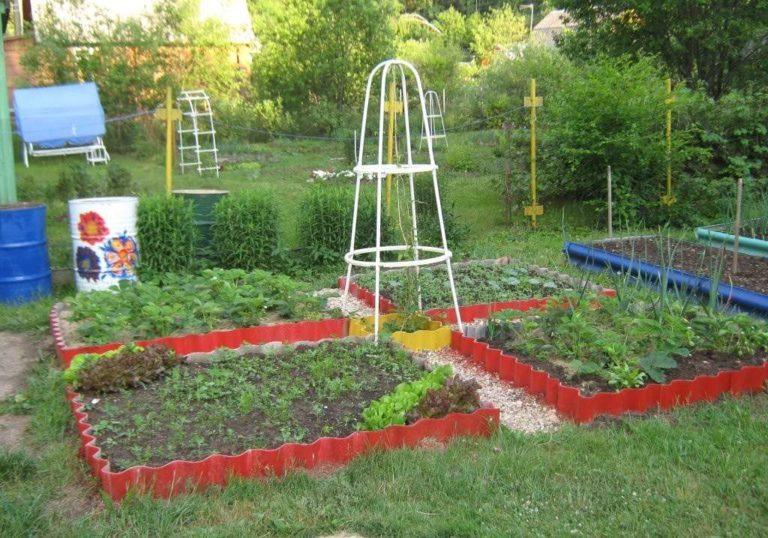 Как разбить красивый огород