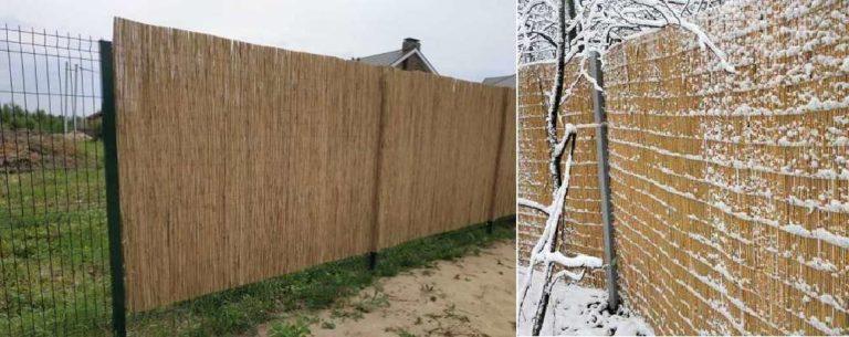 Чем закрыть сетчатый забор или штакетник